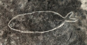 Basin Track - an engraving of a fish