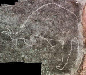 Mooney Mooney - an engraving of a kangaroo