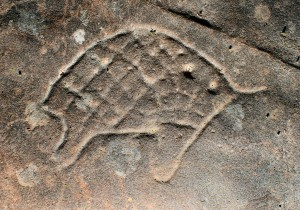 Bobbin Head Track - an engraving of an echidna