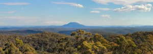 Finchley - a picture of Mt Yengo