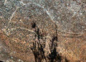 Debenham Road North - an engraving of a wallaby